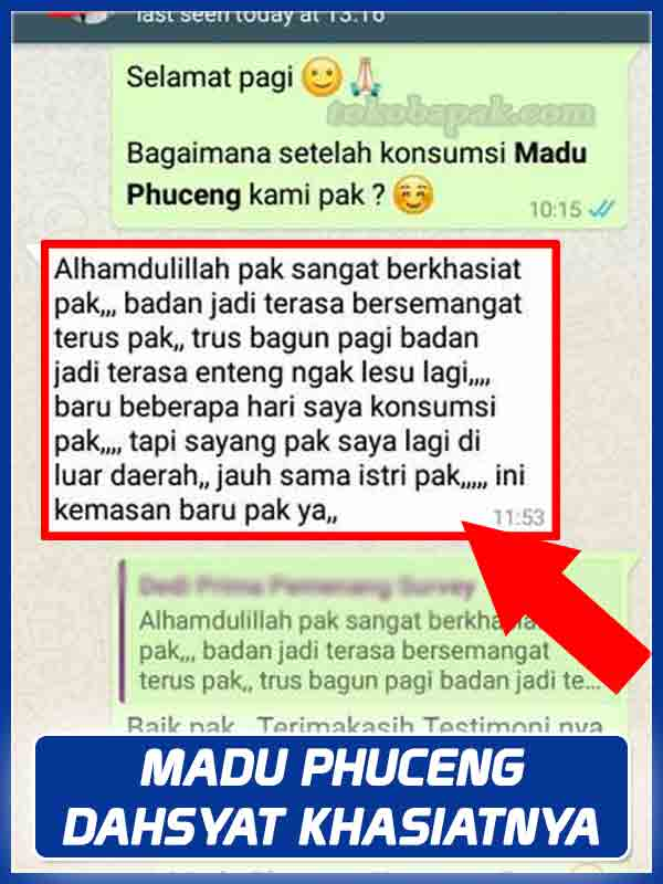 Jual Madu Phuceng Madu Vitalitas Pria di Pesawaran